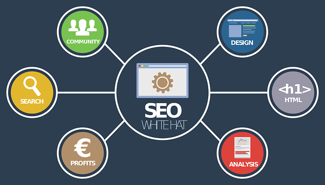 MDirector, Plataforma de Cross-Channel Marketing