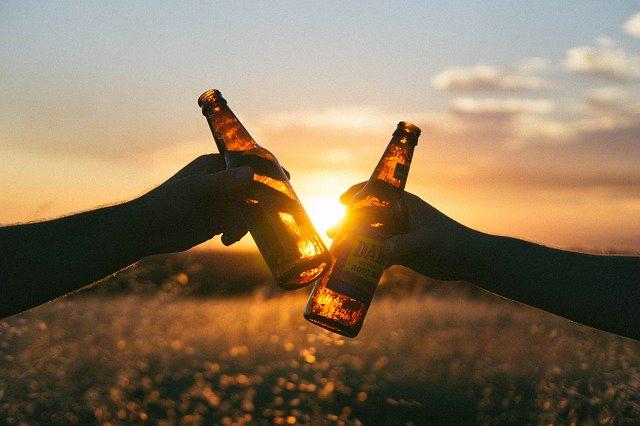 MODELO DE CONTRATO DE TRASPASO DE PATENTE DE ALCOHOLES.
